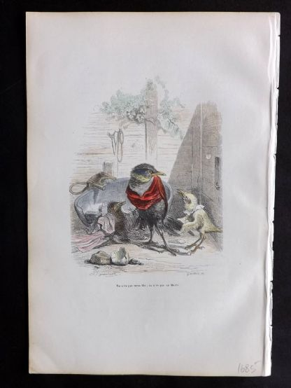 Grandville 1842 Hand Col Print. You are not my son. Birds